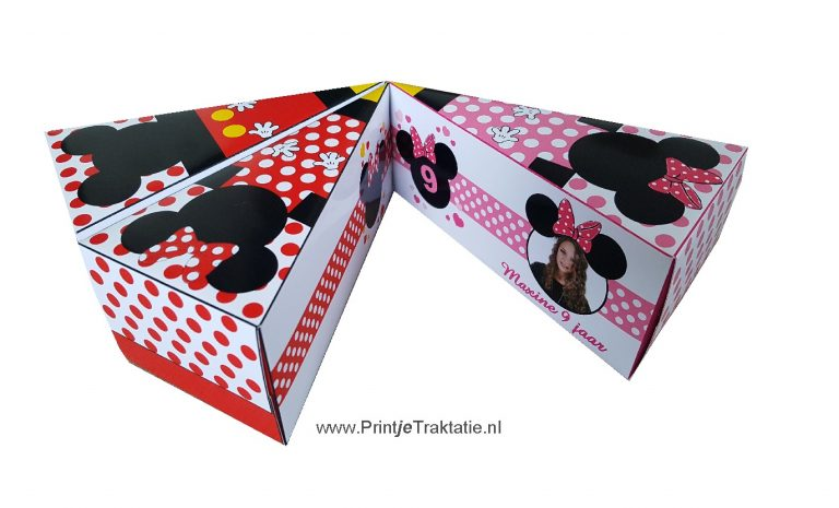 Mickey en Minnie mouse taartpunt